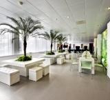 AutoRAI  2011 - Foto 2 - Sfeereiland groen met palmen decoratie