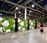 Beleef Koffie 2011 - Foto 5 - Tulpen Expo Wall
