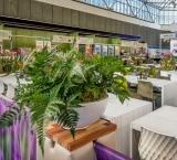 Dental Expo - foto 5 - Terras met groendecoratie