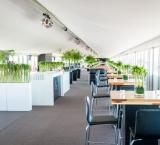 DTM Race Zandvoort - Foto 1 - Bamboe decoratie