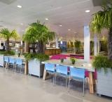 HHB & NMB 2016 - Foto 6 - Ibiza Stijl Restaurant