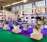 Horecava 2013 - Foto 3 - Expo Flora stand met perenbomen