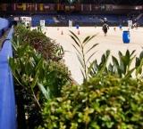 Jumping Amsterdam 2014 - Foto 15 - Groendecoratie