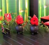 Mets 2015 - Foto 5 - Sushi Terras decoratie