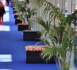 PLMA 2013 - Foto 1 - Fly-over met lounge blokken en kentia palmen