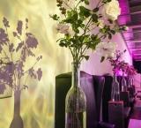 SYTTD 2016 - Foto 13 - Lounge decoratie