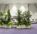 UFI ICCA - Foto 1 - Groen afscheiding